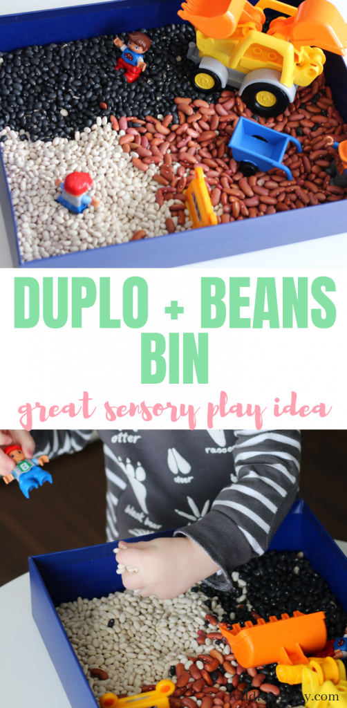 beans and duplo bin (6)