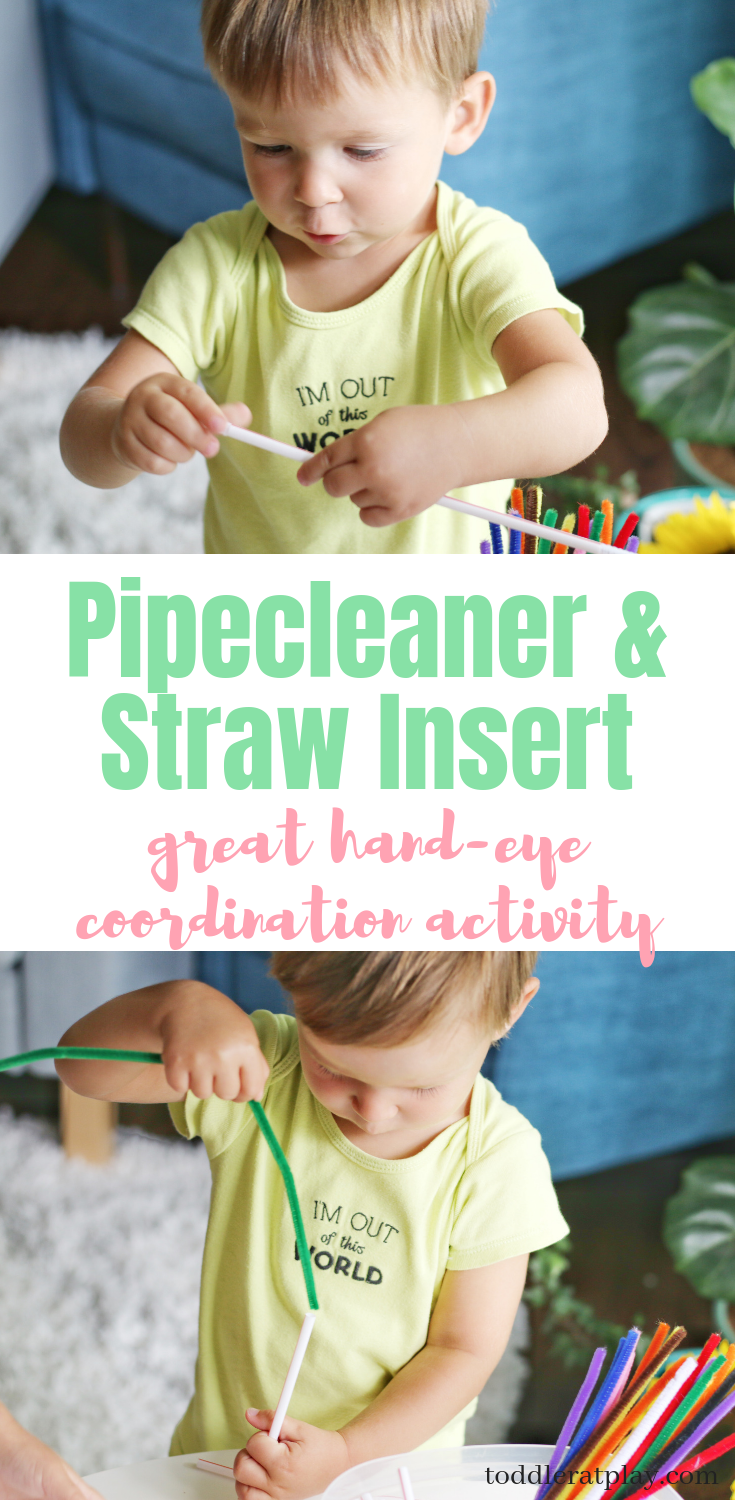 pipecleaner and straws
