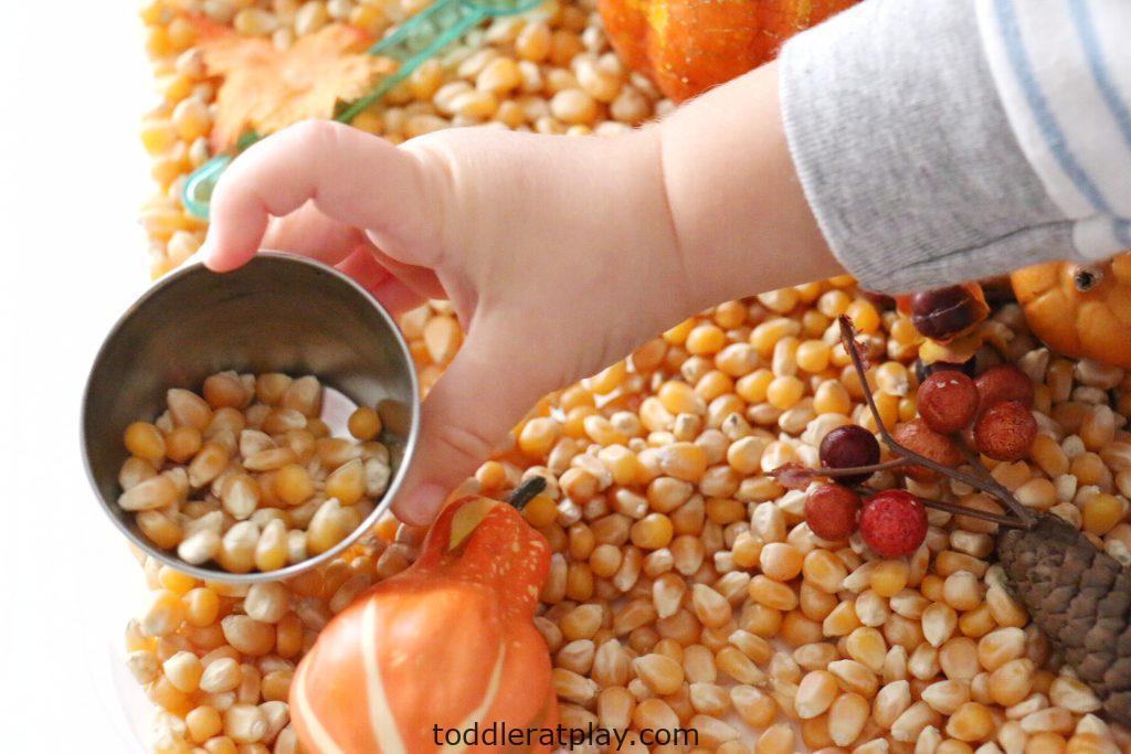 thanksgiving sensory bin (2)