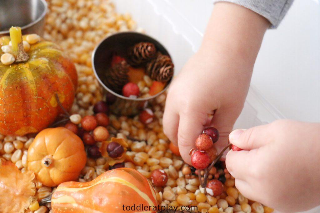 thanksgiving sensory bin (4)