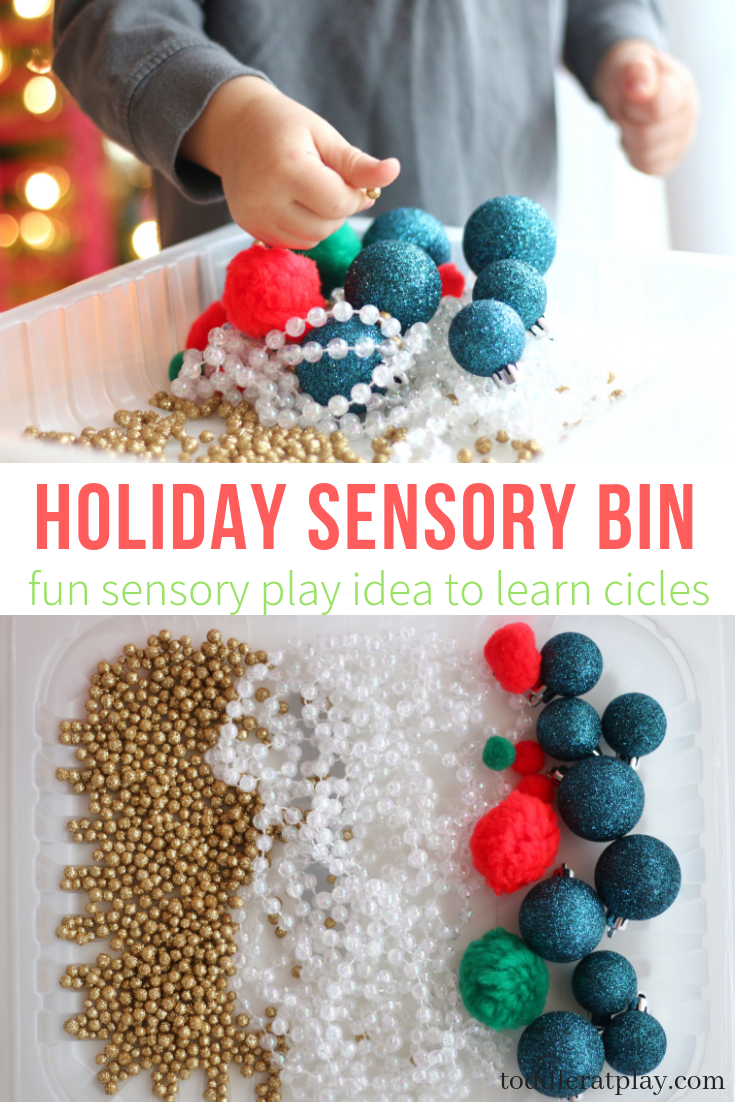 holiday senosry bin