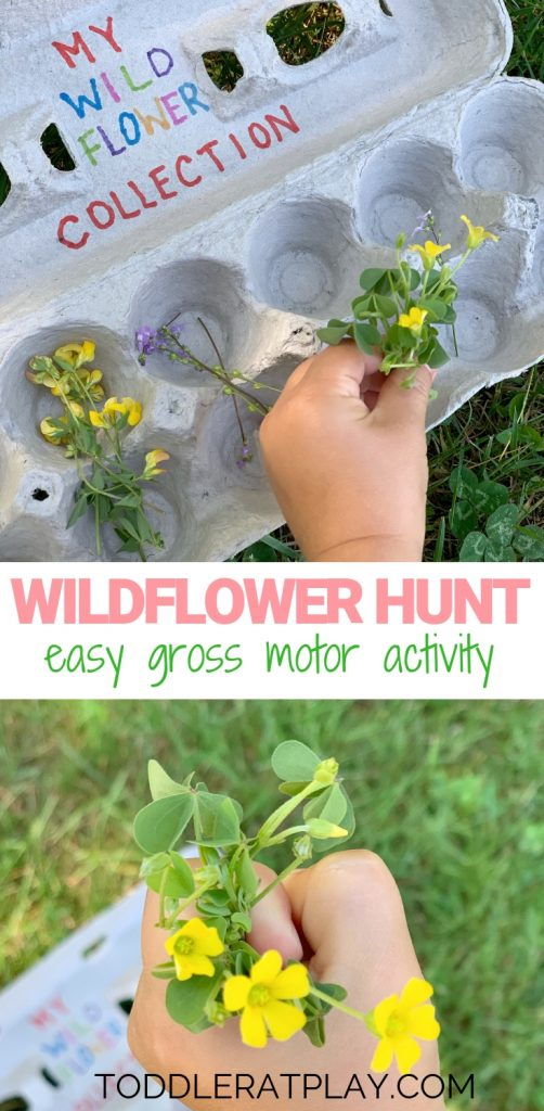 wildflower hunt- toddler at play (16)