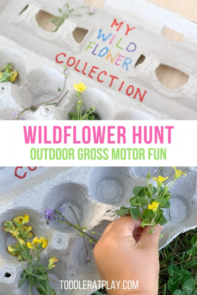 wildflower hunt- toddler at play (8)