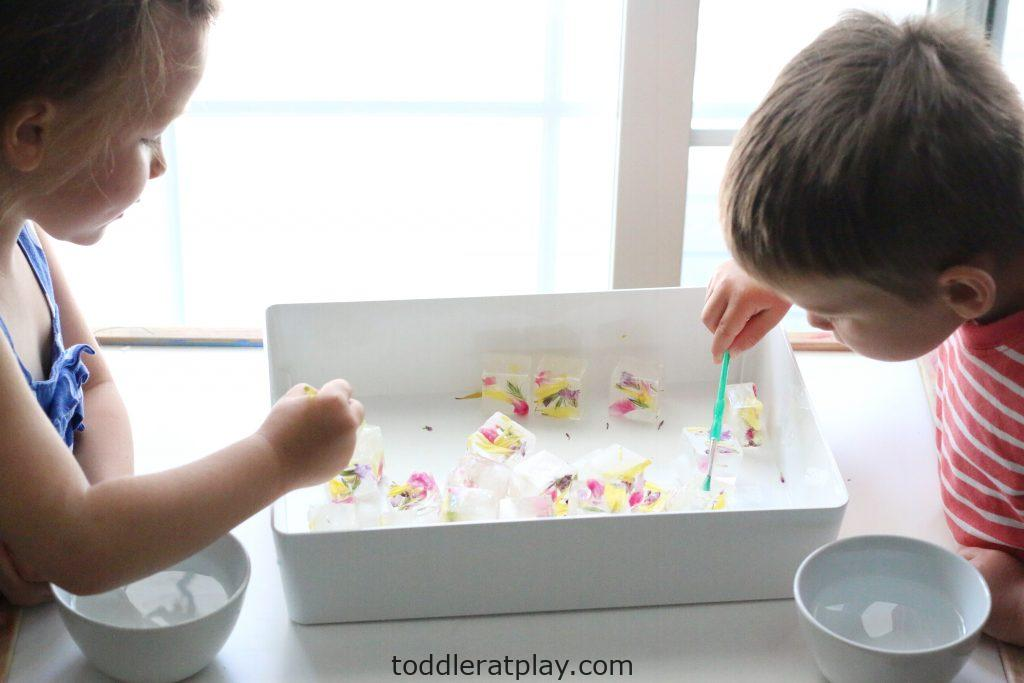 water painting flower ice cubes- toddler at play (11)