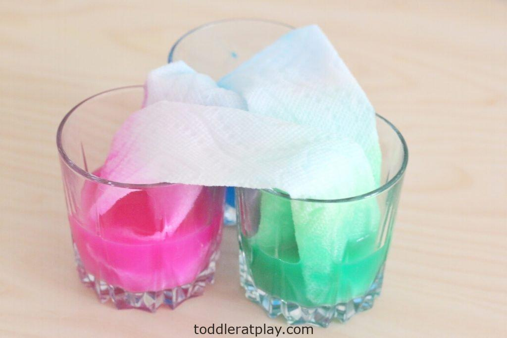 paper towel dye experiment- toddler at play (12)