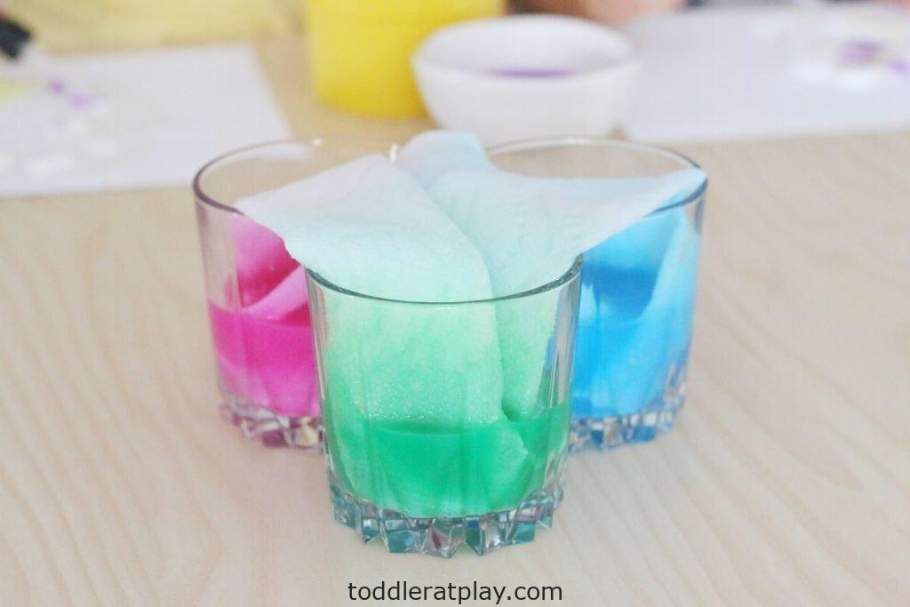 paper towel dye experiment- toddler at play (18)