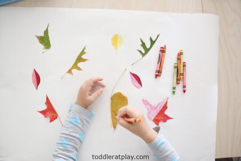 leaf symmetry- toddler at play (13)