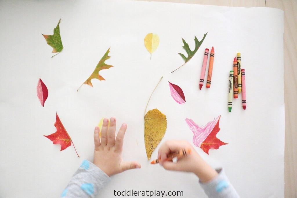 leaf symmetry- toddler at play (14)