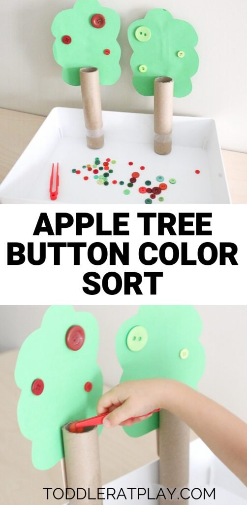 apple tree button color sort- toddler at play (9)