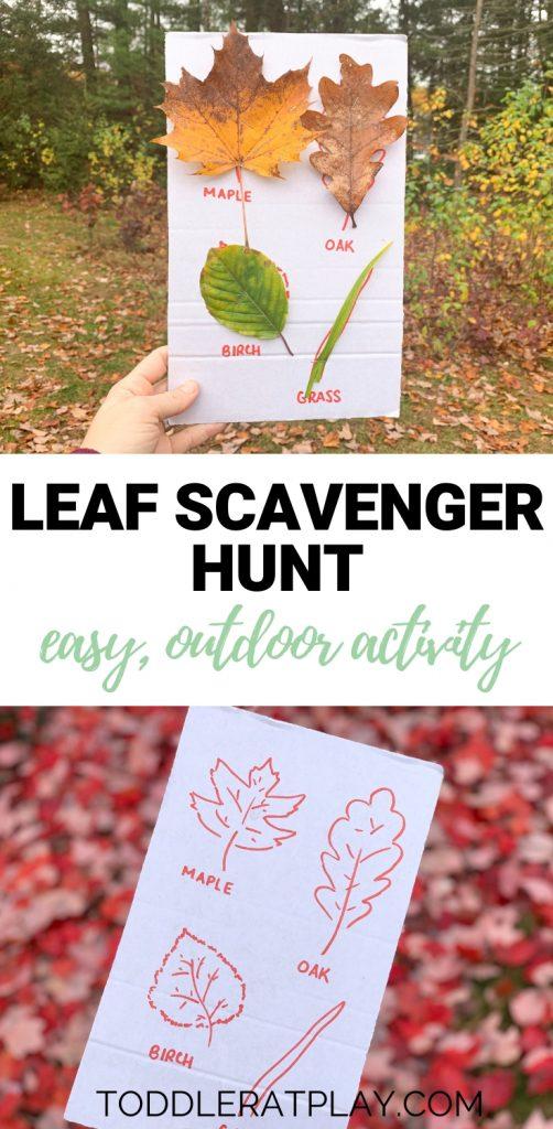 leaf scavenger hunt- toddler at play (9)
