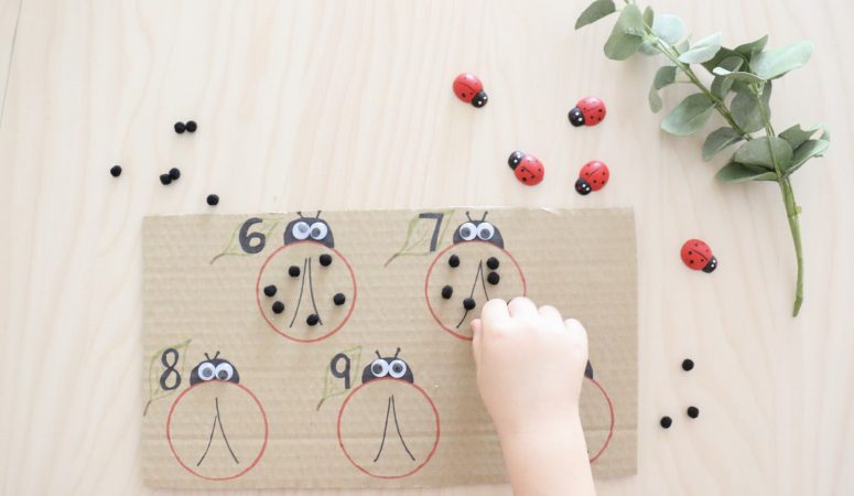 Counting Ladybug Spots Activity