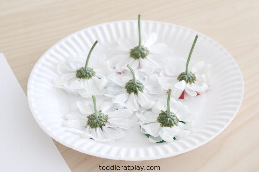 flower stamp art- toddler at play (5)