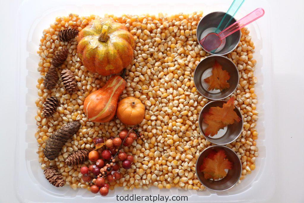 thanksgiving sensory bin (7)
