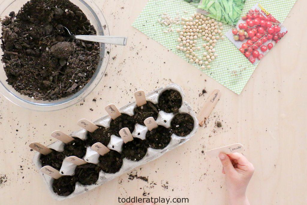 planting seeds activity - toddler at play (2)