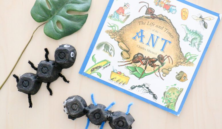 Recycled Ant Craft