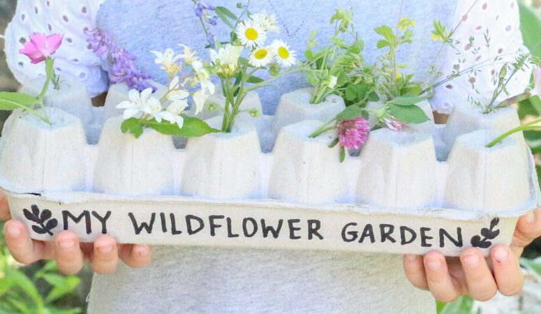 Egg Carton Wildflower Garden