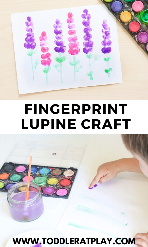 fingerprint lupine craft- toddler at play (2)