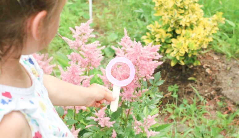 Outdoor Magnifying Glass Color Hunt