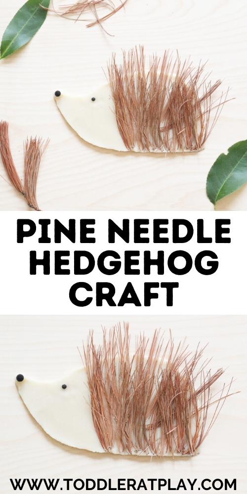 pine needle hedgehog craft - toddler at play (2)