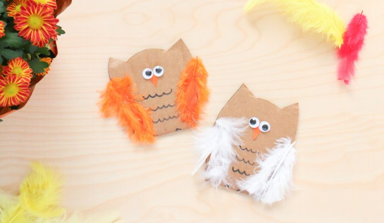 Feathery Owl Craft